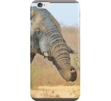 Elephant Bull - Beautiful Mud - African Wildlife iPhone Case/Skin
