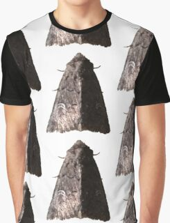 Lacinipolia Stricta (half-lit) B Graphic T-Shirt