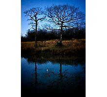 Half Moon - Two Trees Photographic Print