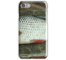 rudd fish scales iPhone Case/Skin
