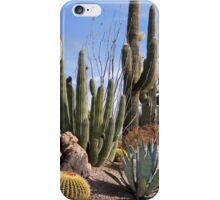 Saguaros and Such iPhone Case/Skin