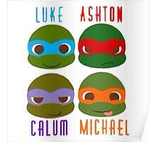 5 seconds of summer ninja turtles Poster