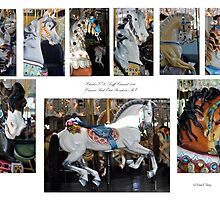 Carousel Ponies by Diane E. Berry