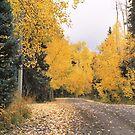 Peak Color by Eric Glaser