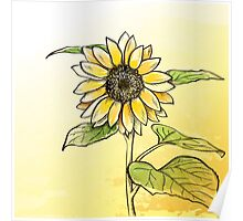 Hand drawn sunflower Poster