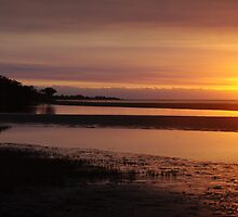 Sunset at Weipa by Liz Worth