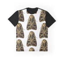 Feltia Jaculifera B Graphic T-Shirt