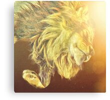 King of the sunshine Canvas Print