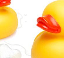 Love Ducks Sticker