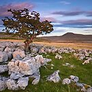Across to Ingleborough by Jeanie