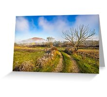 rural landscape with road through agricultural meadow in fog Greeting Card