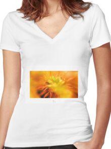 Colour Burst Women's Fitted V-Neck T-Shirt