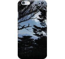 Mt Davidson Looking North iPhone Case/Skin