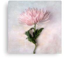 Pretty Pink Mum Canvas Print