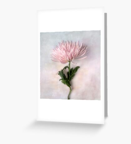 Pretty Pink Mum Greeting Card