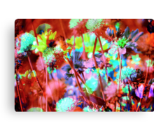 Secret Garden XVII Canvas Print