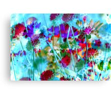 Secret Garden II Canvas Print