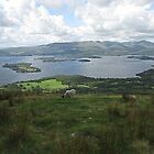 View of Loch Lomond from Conic Hill, Balmaha, Scotland by MagsWilliamson