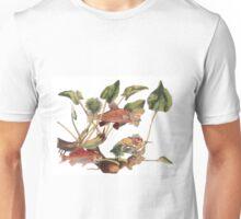 Goldfish Cowboy Shoot Out Unisex T-Shirt