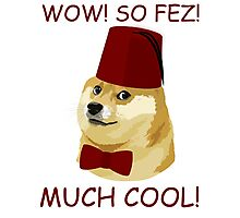 Funny Doge Meme - Doctor Who Parody - So Fez T Shirt Photographic Print