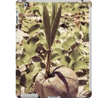 Sprout of coconut tree iPad Case/Skin