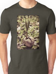 Sprout of coconut tree Unisex T-Shirt