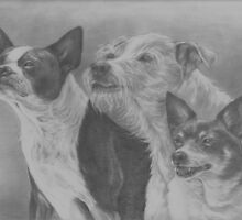 Terrier Trio by Pam Humbargar