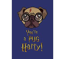 You're a Pug Harry Photographic Print
