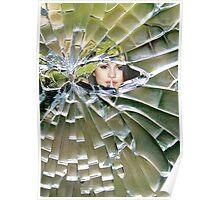Amazing Art - 17 (Cracked Glass) Poster