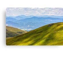 hillside meadow in mountain Canvas Print