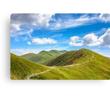 path to the mountain top Canvas Print
