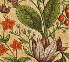 Vintage,rustic,shabby chic,hand drawn flower illustration from the victorian era Sticker