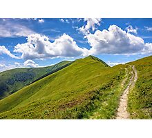path to the mountain top Photographic Print
