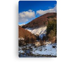 stream between snowy mountains with deciduous and conifer forest Canvas Print