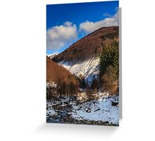 stream between snowy mountains with deciduous and conifer forest Greeting Card