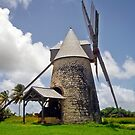 sugar mill/Marie-Galante by globeboater