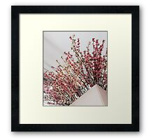 Peace and Pearls Framed Print