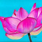 Pink Lotus Fuchsia Waterlily by Laura Bell