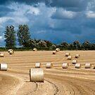 Hay Bales & Storm Clouds by mikebov