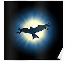 Flying nighthawk Poster