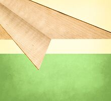 Paper Airplanes of Wood 17 by YoPedro