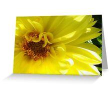 Yellow Dahlia by Liz H Lovell Greeting Card