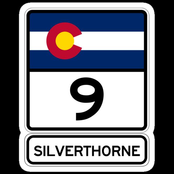 CO-9 Silverthorne Colorado by IntWanderer