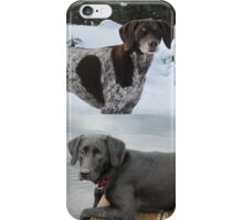 Canadian family dogs iPhone Case/Skin