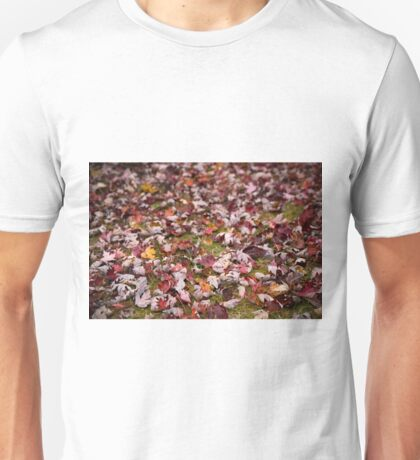 Autumn Leaves 1 Unisex T-Shirt