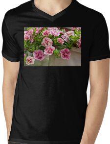 Petunias Posing as Roses Mens V-Neck T-Shirt