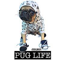 PUG LIFE PEE WEE Photographic Print