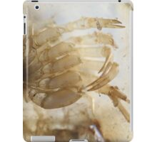 Horseshoe crab baby detail - 2016 iPad Case/Skin