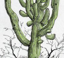 Arizona Saguaro art Sticker