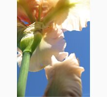 Beautiful Peach Bearded Iris Against a Sapphire Sky Unisex T-Shirt